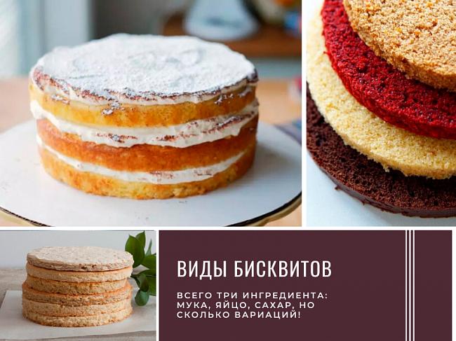 Виды бисквитов для тортов с подробным разбором рецептов.